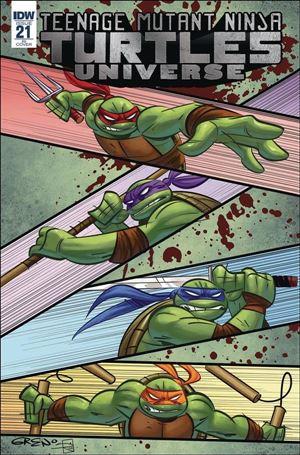 Teenage Mutant Ninja Turtles Universe 21-C