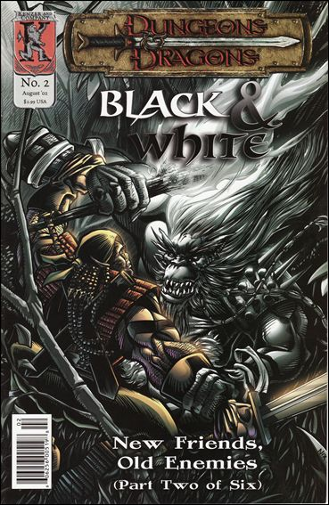 Dungeons and Dragons: Black & White 2-A by Kenzer and Company