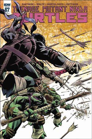 Teenage Mutant Ninja Turtles (2011) 67-C