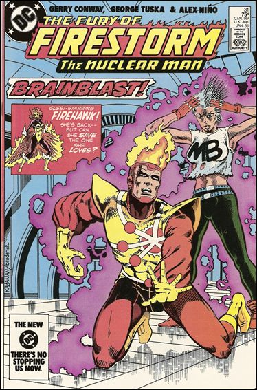Fury of Firestorm 31-A by DC
