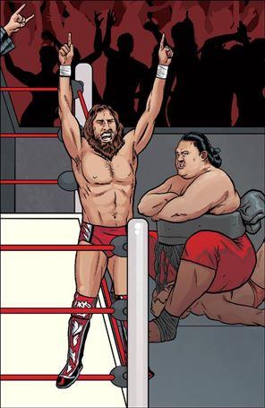 WWE 20-C