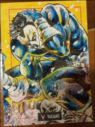 2013 Valiant Comics Preview Trading Card Set (Sketch Card Subset) DC-01-A
