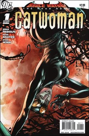 Bruce Wayne: The Road Home: Catwoman 1-A