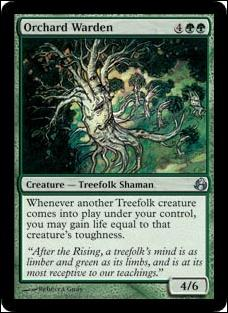 Magic the Gathering: Morningtide (Base Set)131-A by Wizards of the Coast