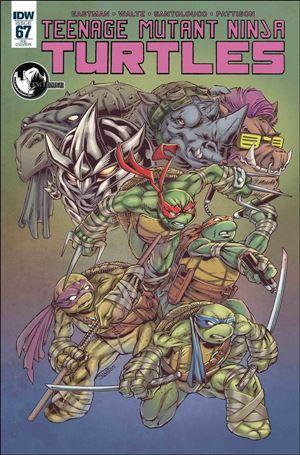 Teenage Mutant Ninja Turtles (2011) 67-D