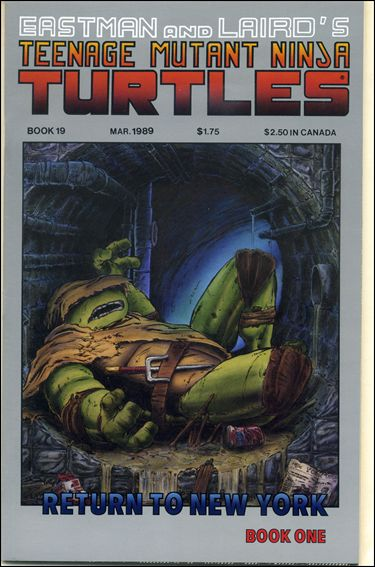 Teenage Mutant Ninja Turtles (1984) 19-A by Mirage