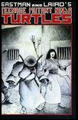 Teenage Mutant Ninja Turtles (1984) 17-A