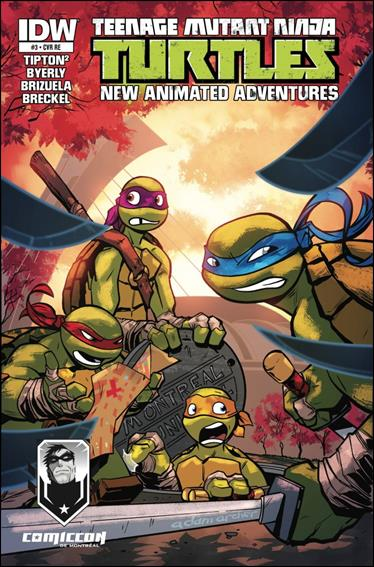Teenage Mutant Ninja Turtles New Animated Adventures 3-C by IDW
