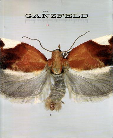 Ganzfeld 3-A by Kaput